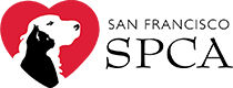 logoForWebsite_210x80.png