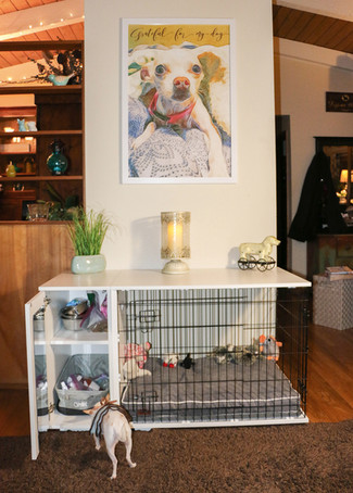 The Fido Studio by Omlet - A Pawsome Piece of Pawperty