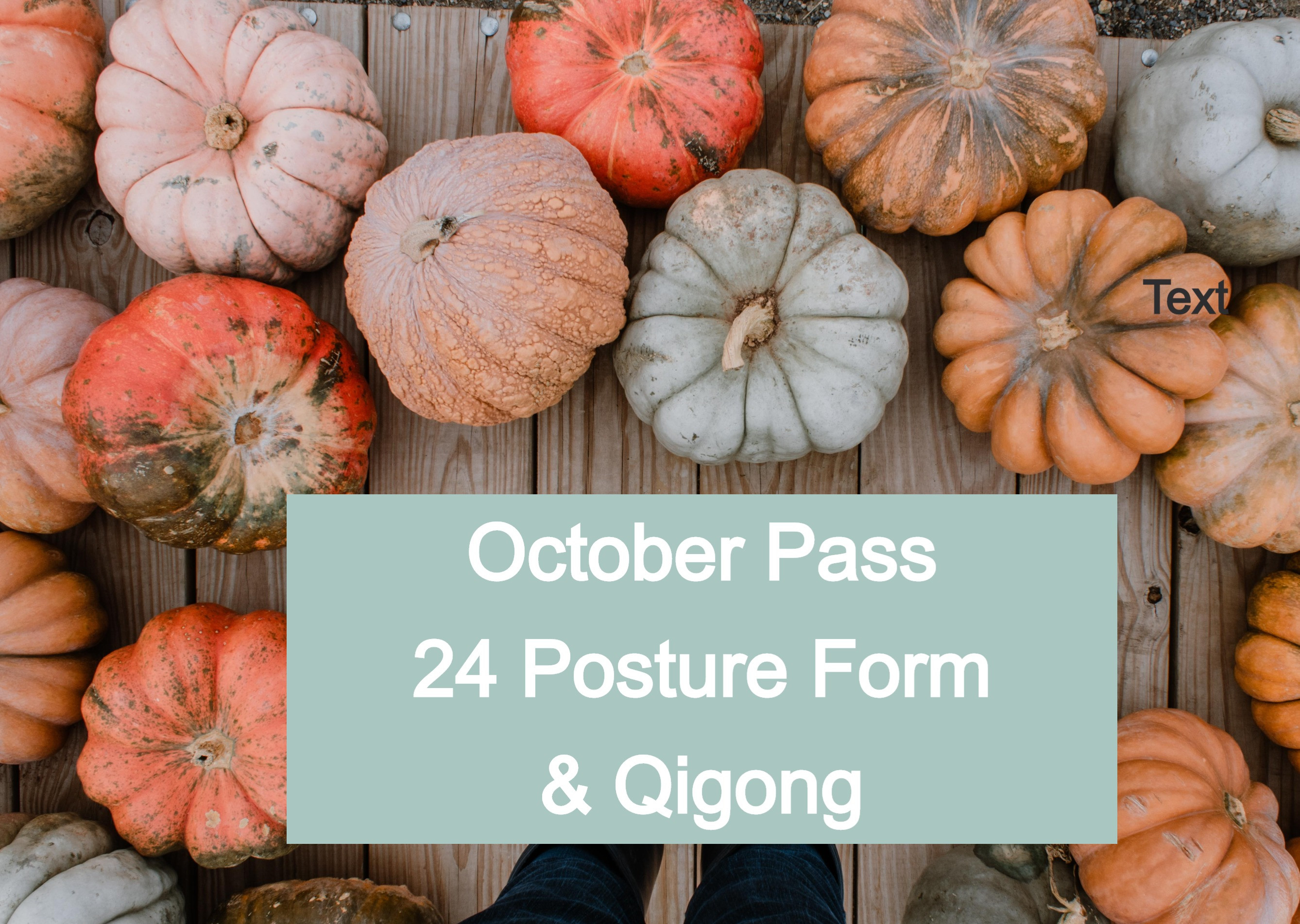 OCTOBER PASS for 24 Posture Classes