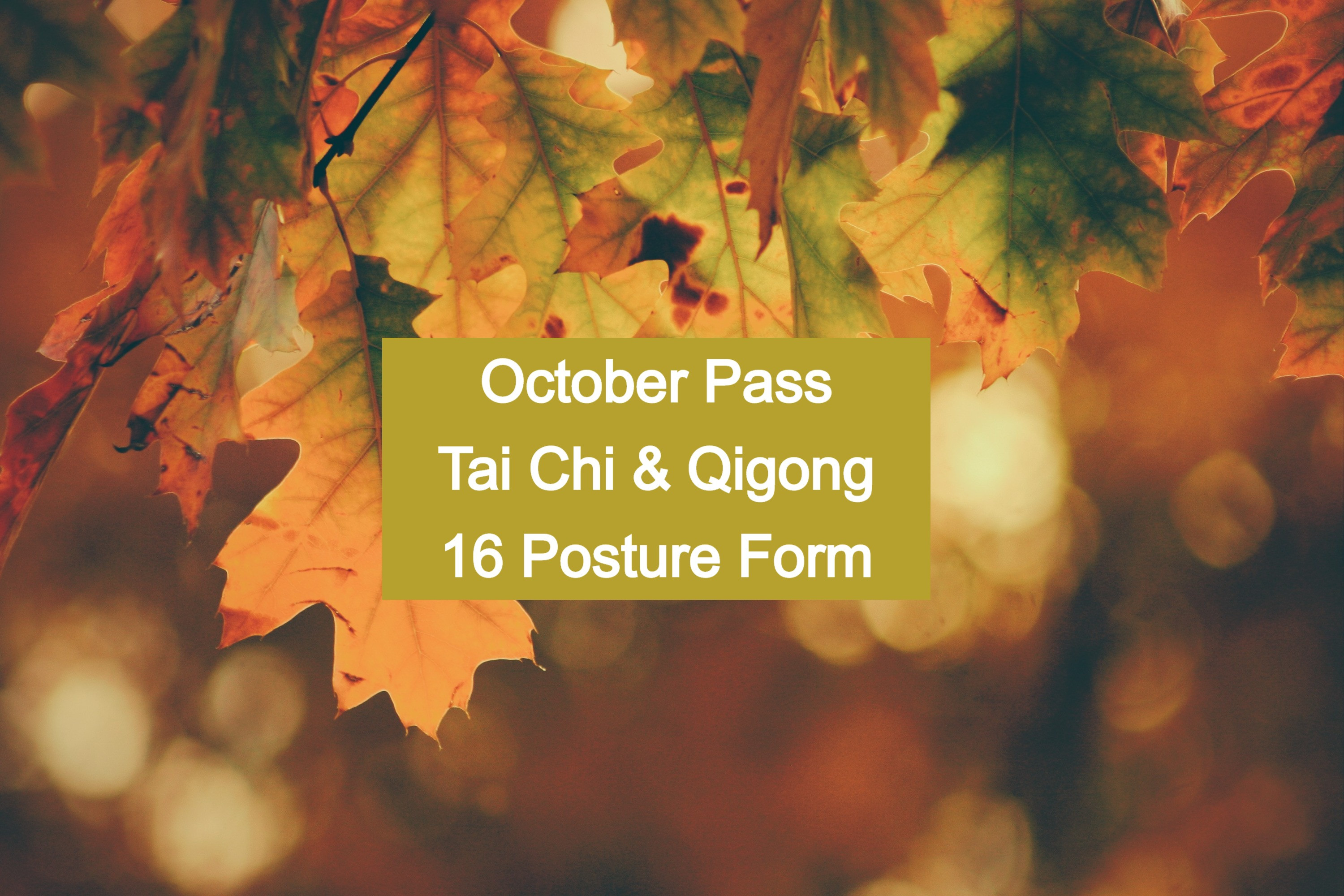 OCTOBER PASS for 16 Posture Classes