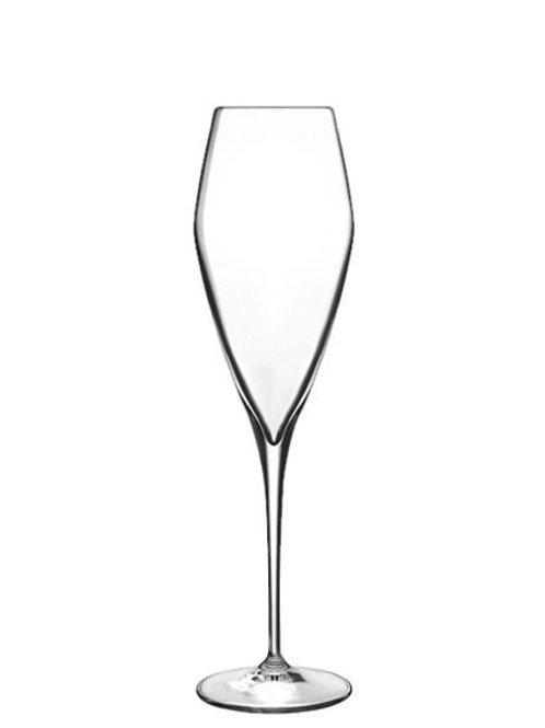 Copa italiana para champagne o espumosos