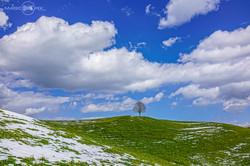 mabopix_landscape1