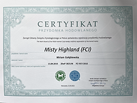certyfikat FCI