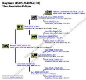 Zrzut ekranu 2021-01-22 o 12.57.25.png