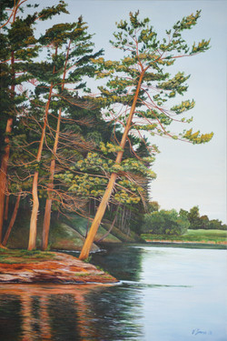 SOLD 'Pines on Temperance Lake'.