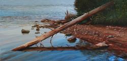 Fallen Charleston Lake