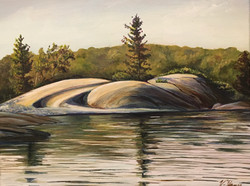 Swirl Island Study