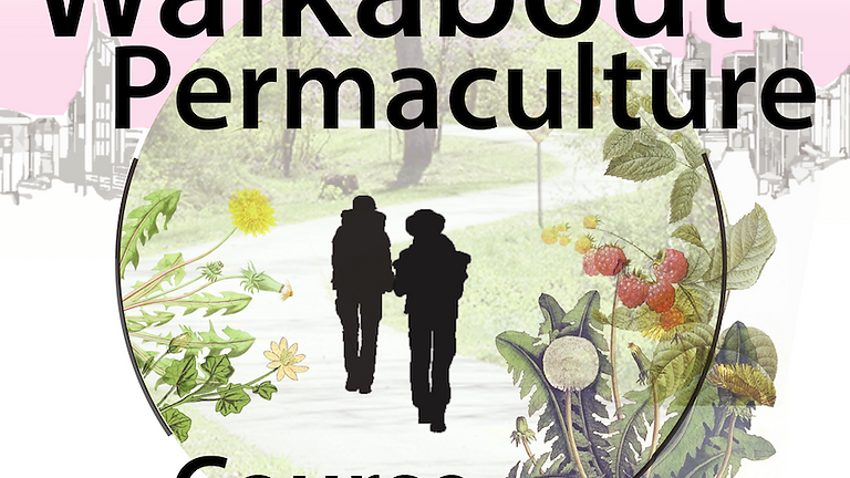Walkabout Permaculture Course (1)