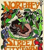 Northy Street City Farm.jpeg