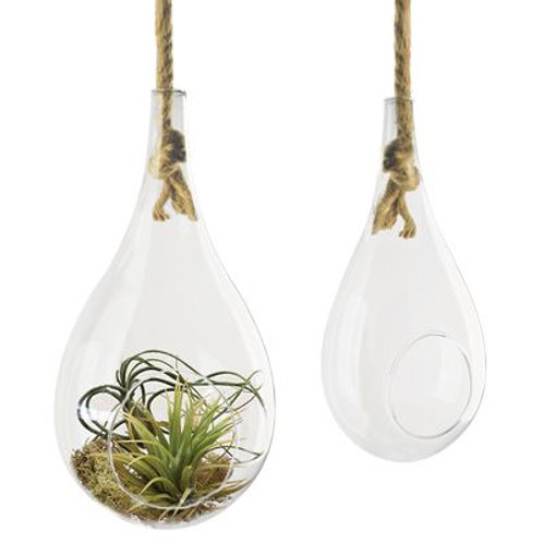 Glass Hanging Rope Teardrop Terrarium