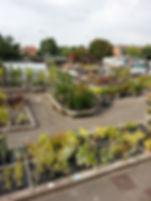 Hardwick's Garden Centre, Boroughbridge