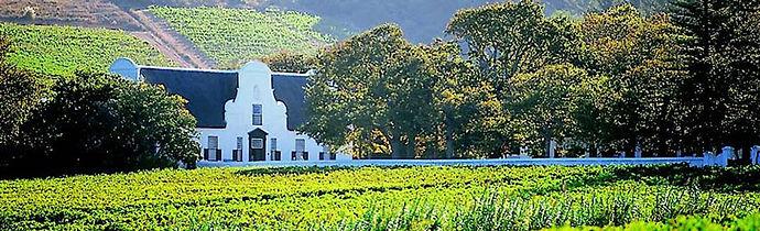 winelands-gal.jpg