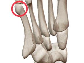 人間の身体のバランスを取る要の『足』