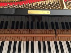 ピアノの弦と指