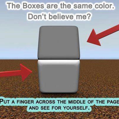 colour constancy block.jpg
