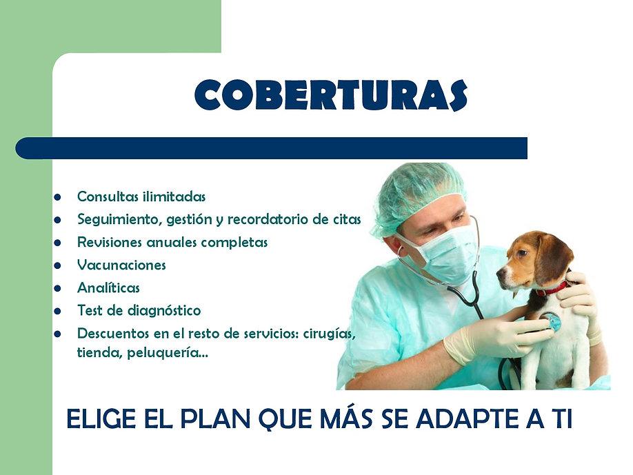 presentacion plan EN PDF-003.jpg