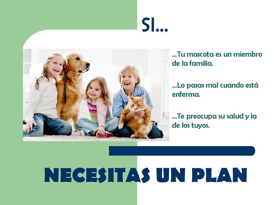 presentacion plan EN PDF-001.jpg
