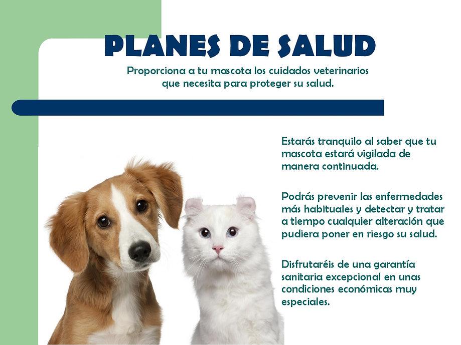 presentacion plan EN PDF-002.jpg