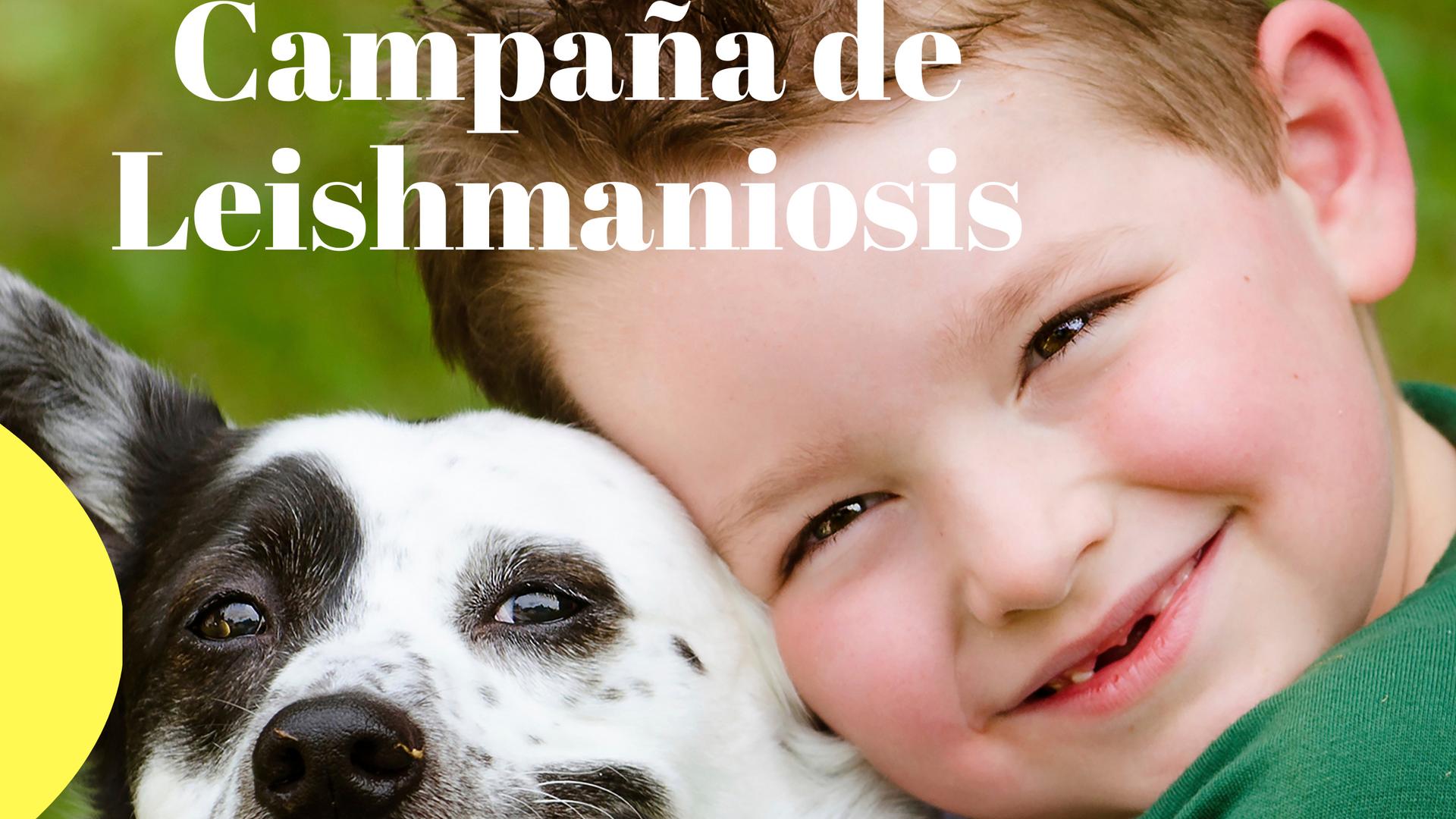 Campaña de Leishmaniosis 5.png