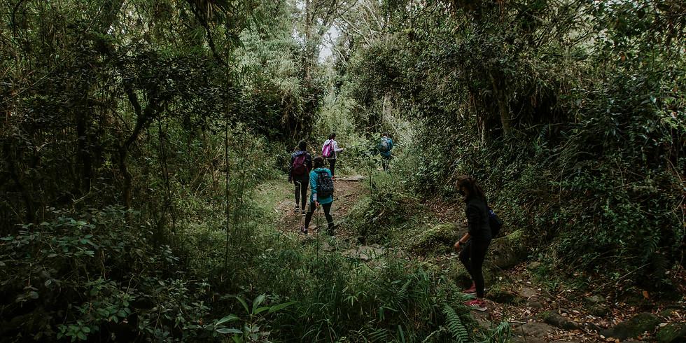 Caminata Cerros de las Tres Viejas #1