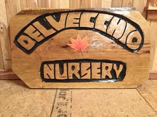 Delvecchio Nursery expo pic_edited