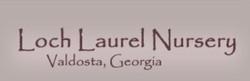 Loch Laurel Nursery