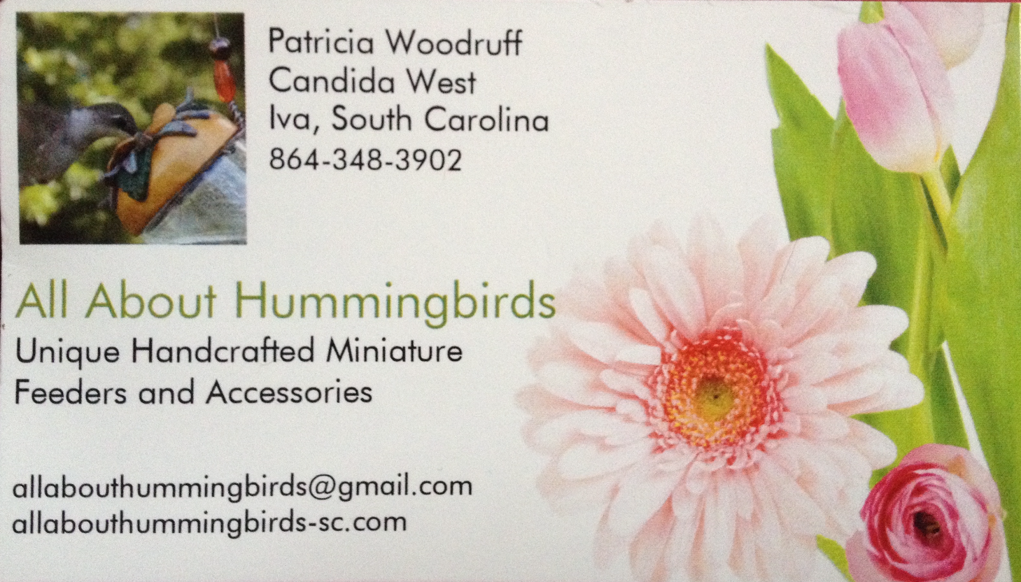 All About Hummingbirds logo_edited
