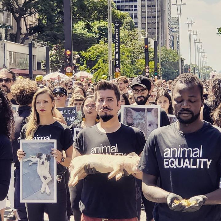 MANIFESTAÇÃO ANIMAL EQUALITY
