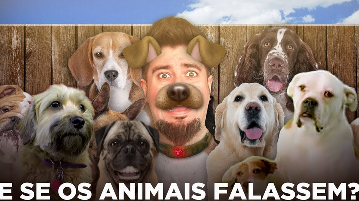 E SE OS ANIMAIS FALASSEM?