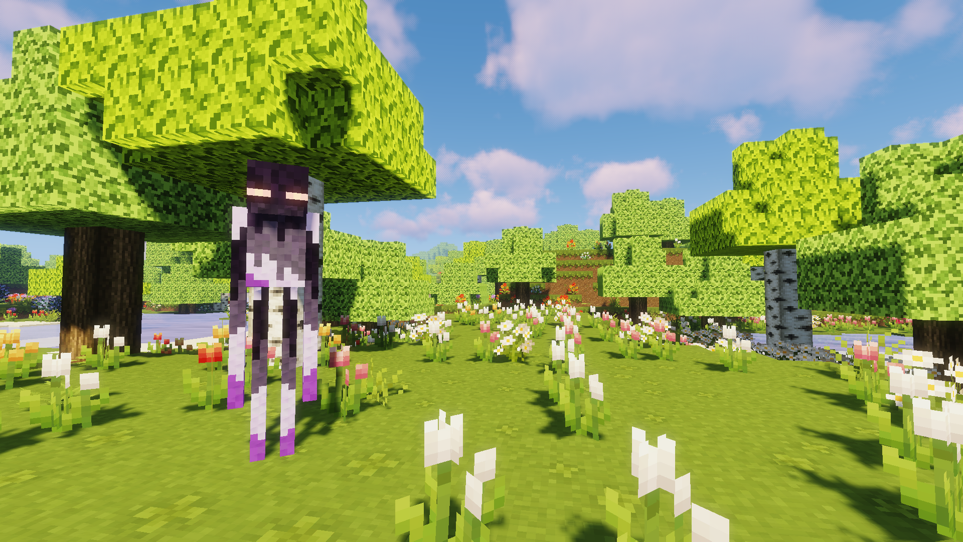 Asexual Enderman