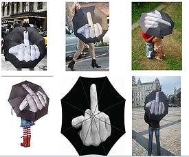Middle Finger Umbrella.jpg