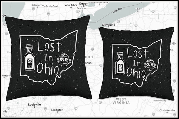 Web Pillows 1 Lost In Ohio Classic Main