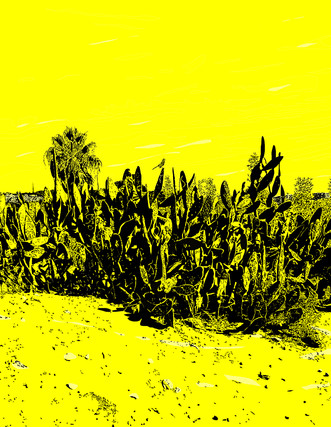 One in an ongoing series on Southern California observations and landscapes.