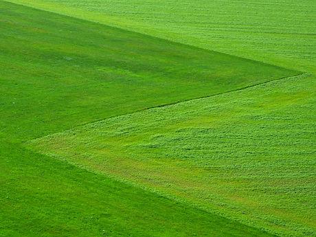 Grünlandtechnik