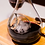 Thumbnail: Handcrafted Wine Decanter