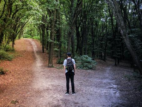 Meditation: Intuitive Choice