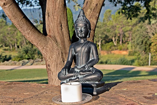 Buda_yoga.jpg