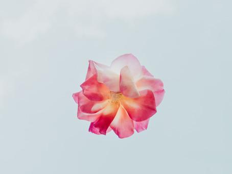 My heart is a flower