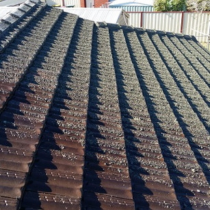 Horand Industry Before Roof Clean