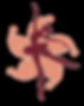 HKYDA-logo.png