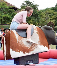 entertainment at teenage party venue - rodeo bull