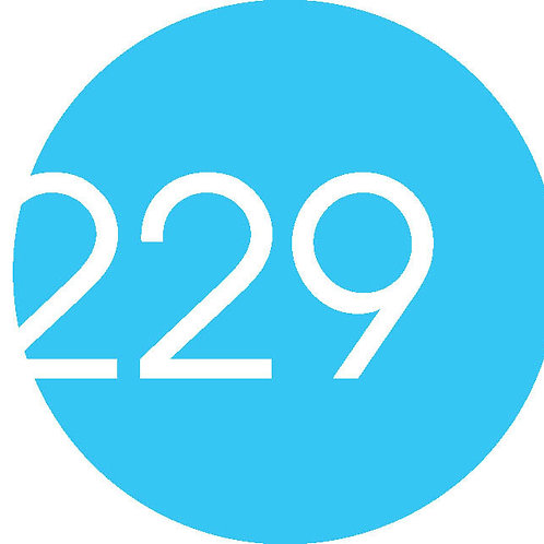 Project 229