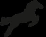 Logo Pferd Jugendreitstall Hübben