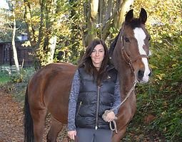 Bild Pferd Maxi
