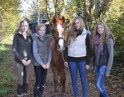 Bild Pferd Roxy