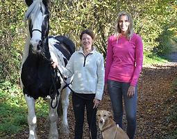 Bild Pferd Paloma
