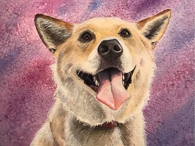 dog6.PNG