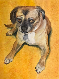 Penny The Puggle