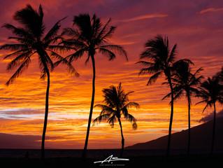 Aloha from Kihei, Maui