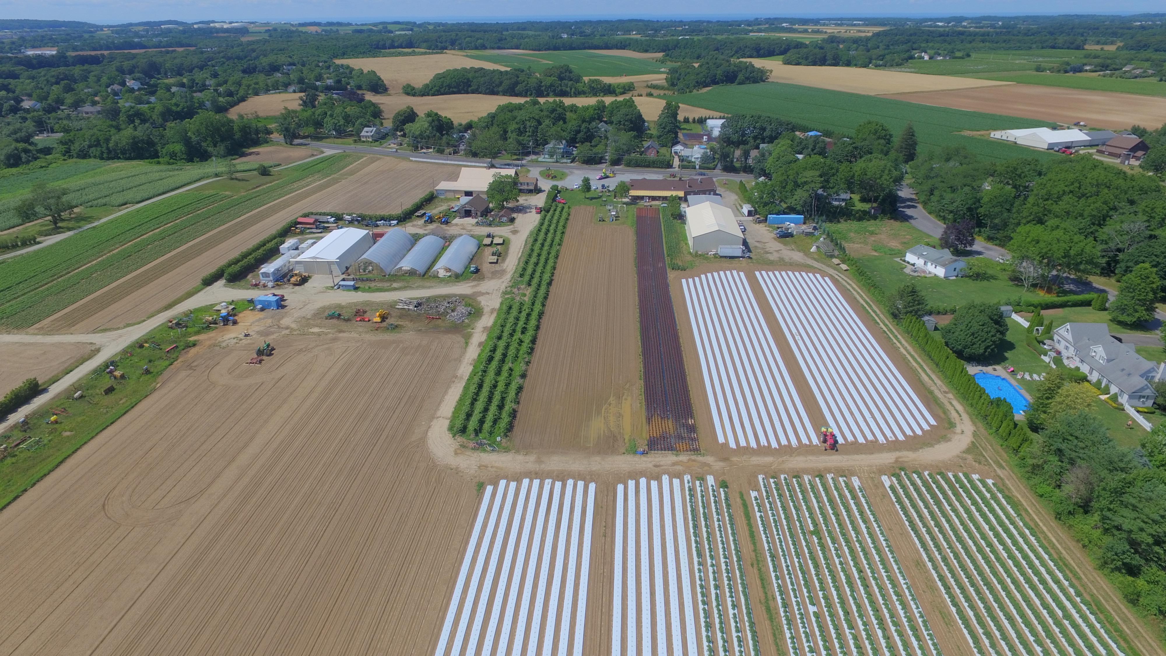 Bayview Farms 2016